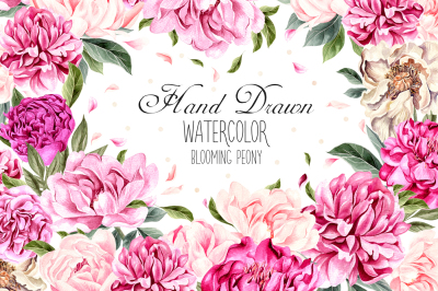 Hand Drawn Watercolor Blooming Peony