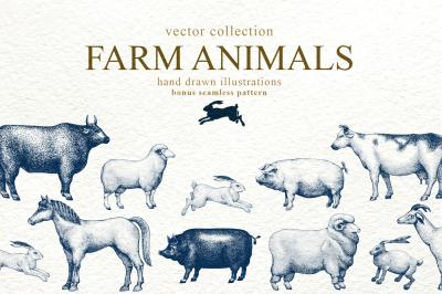 Farm Animals Vector Collection