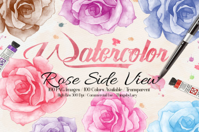 100 Hand Painted Watercolor Rose Flower Clip Arts Side View