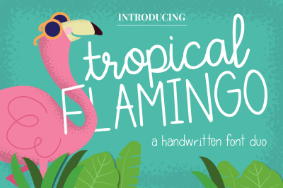 Tropical Flamingo Font Duo