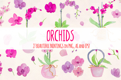 27 Pretty Watercolor Orchid Flowers
