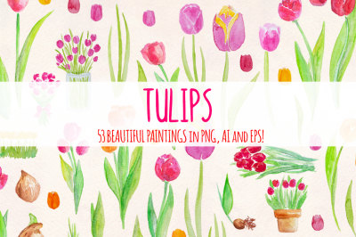 53 Bright Tulip Watercolor Vector Clip Art