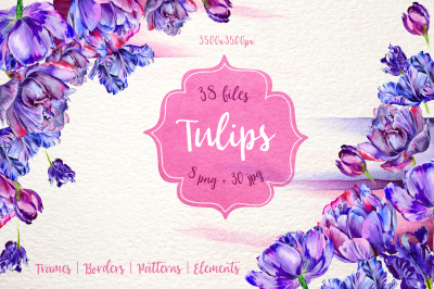 Lovely purple tulip PNG watercolor set