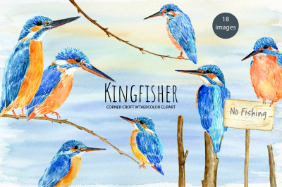 Watercolor Kingfisher Illustration
