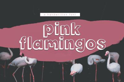Pink Flamingos - A Handwritten Font