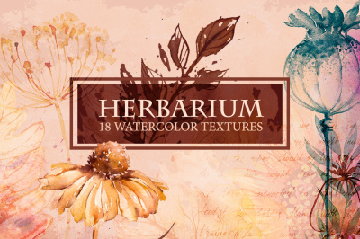 Herbarium. Watercolor Textures.