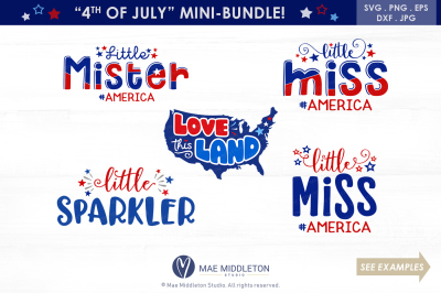 America Mini Bundle! svg cut files: Little Mister America,