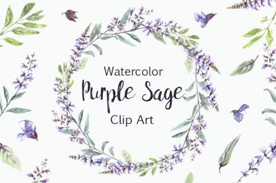 Watercolor Purple Sage Clip Art Set
