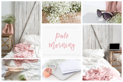 Pale Morning Bundle