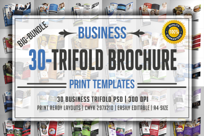 Trifold Brochure Bundle
