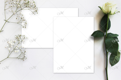 White Rose Mockup. PSD+JPG