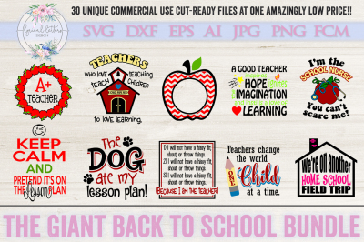 Teacher SVG Bundle Back to School Cut File Appreciation Design