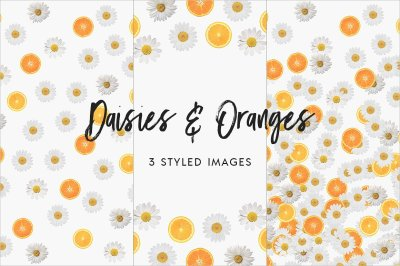 Daisies & Oranges Styled Stock