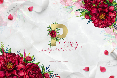Peony inspiration - watercolor set