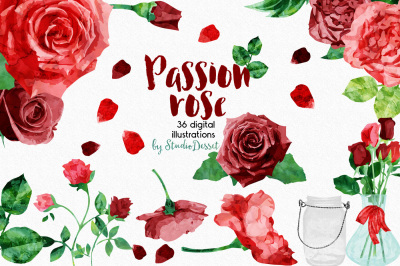 Passion Rose - Watercolor Cliparts