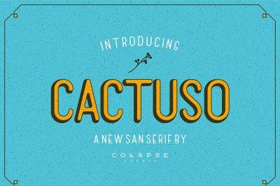 Sans Serif Font - Cactuso