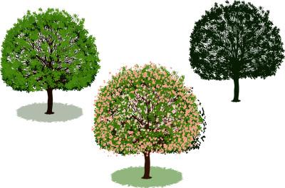Beautiful tree set