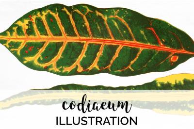Leaf Clipart Vintage