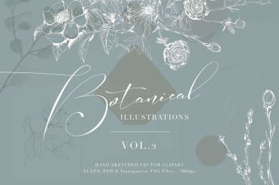 Botanical Illustrations Vol.2