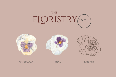 THE FLORISTRY floral collection: watercolor, line art, real flowers