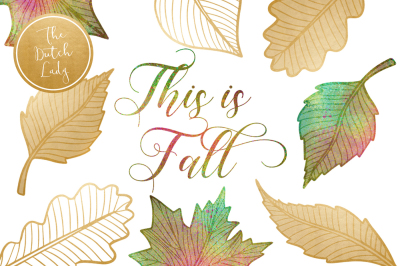 Autumn & Fall Leaves Clipart Set