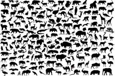 190 wild animals
