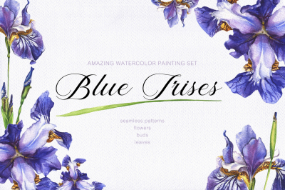Blue Irises - watercolor painting set