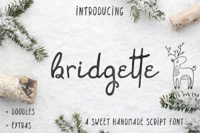 Brigette script font + Woodland doodles