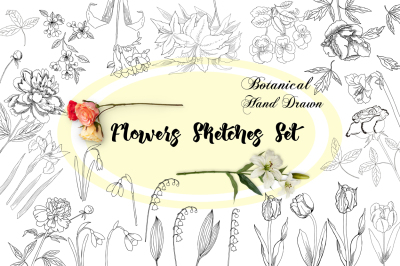 Flowers Sketches Set. Clip art