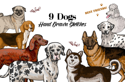 Dogs Sketches Set, digital clip art