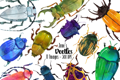 Watercolor Beetle Clipart