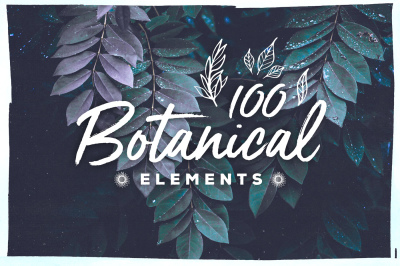 100 Handsketched Botanical Elements