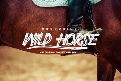 Wild Horse Wet Brush