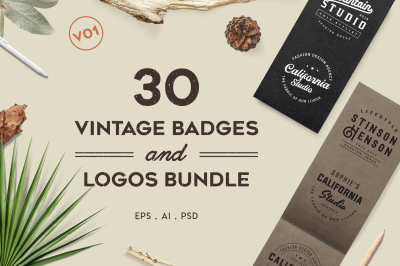 Vintage Badges and Logos Bundle V01