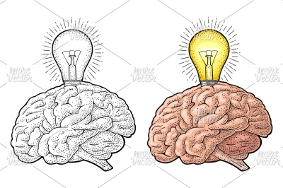 Human anatomy brain and glowing light incandescent bulb w