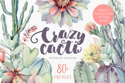CRAZY CACTI Watercolor set