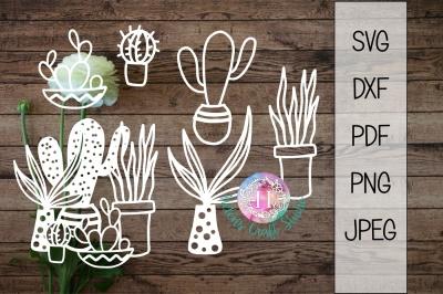 Cactus succulent SVG DXF PDF JPEG PNG Clipart
