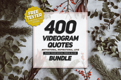 Videogram Bundle