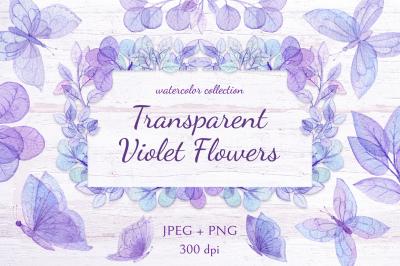 Transparent Violet Flowers