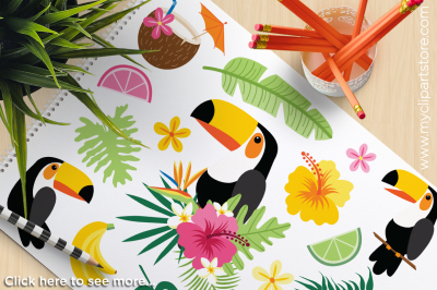 Tropical Toucan Vector Clipart