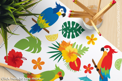 Paradise Parrots / Tropical Birds Vector Clipart