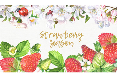 Strawberries and blossom flowers watercolor botanical set.