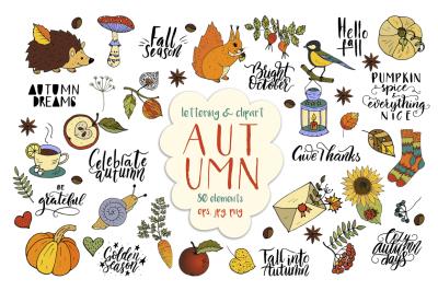 Autumn big graphic set