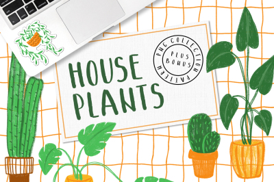HOUSEPLANTS – Colored Pencils PNG Pack