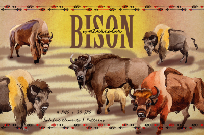 Exotic bison wild animal PNG watercolor set