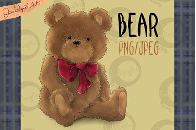 Bear   Clip art illustration PNG/JPEG