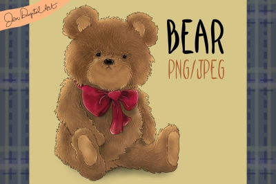 Bear | Clip art illustration PNG/JPEG