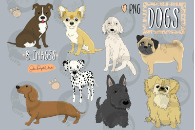 Dogs | 8 images | PNG Clip art illustrations