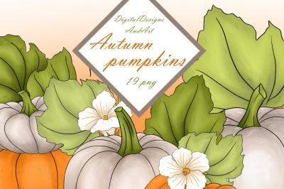 Autumn pumpkin clipart