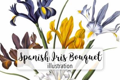 Flowers: Vintage Spanish Iri Bouquet
